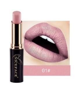 Lip Gloss Makeup Matte Metal Lipsticks