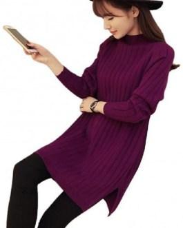 Fashion Spandex Turtle Neck Pullover Sweater