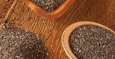 salba chia seeds whole