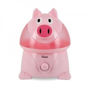 pig01