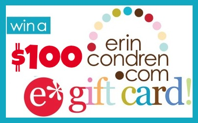 erin condren 100 GC