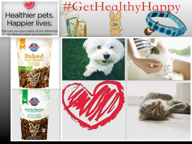 hill's-science-diet-dog-or-cat-bundle-giveaway-button