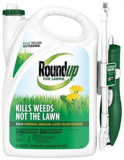 homemade weed killer lawns