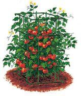 48-inch-tomato-cage