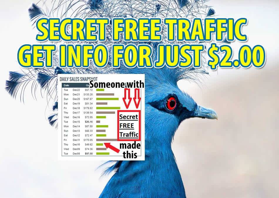 Secret Free Traffic Method – Would it be worth $2 for you to get it?