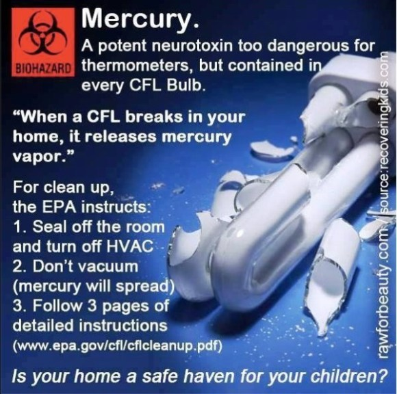 Mercury Bulbs copy
