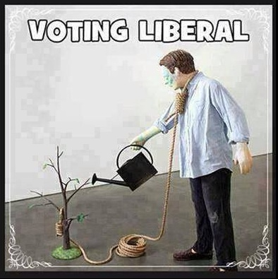 Voting Liberal copy