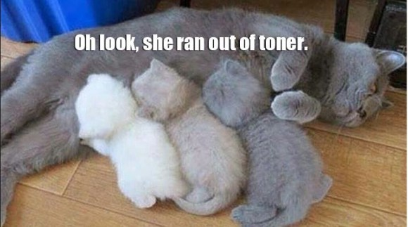 Out of Toner copy