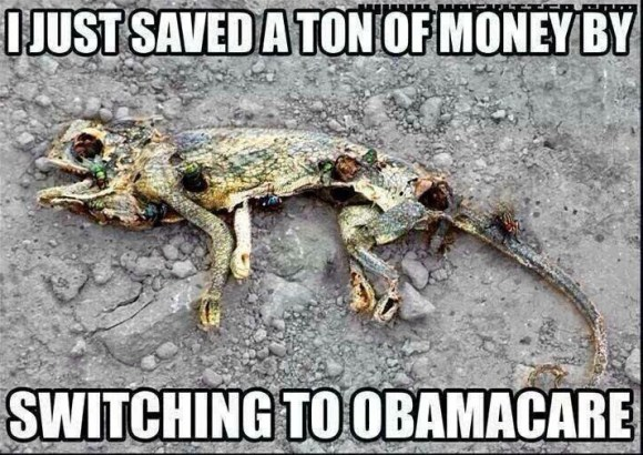 Switch to Obamacare copy