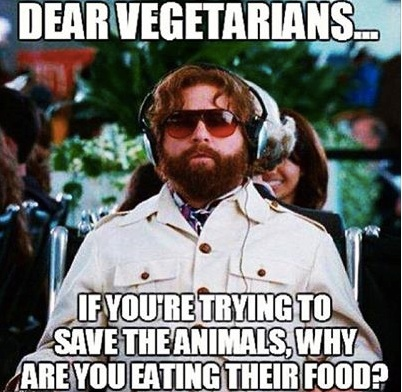 Dear Vegetarians copy