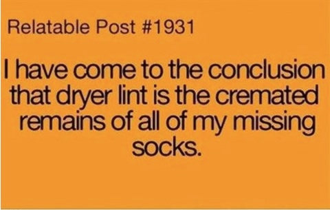 Dryer Lint copy