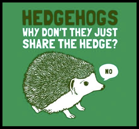Hedgehogs copy