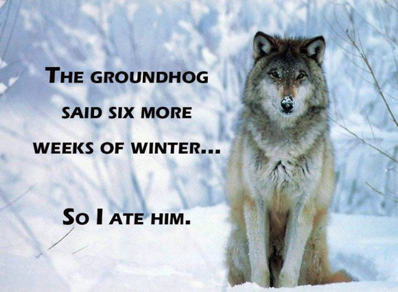 Ate the Gourndhog copy