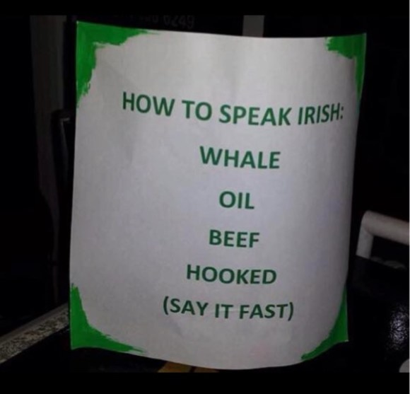 Speak Irish copy