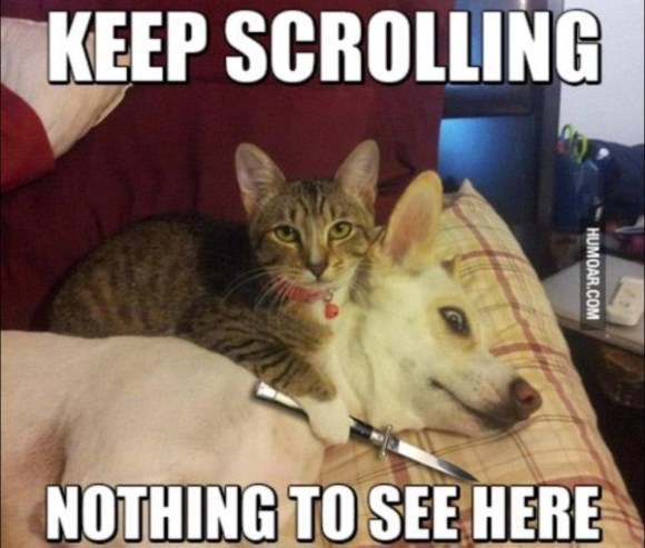 Keep Scrolling copy