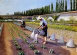 G._Caillebotte_-_Les_jardiniers