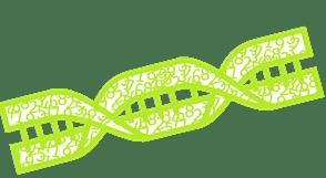 DNA Data Gene