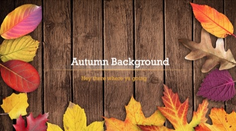 if you are in need of autumn powerpoint background then this powerpoint is ideal for you use this theme for presentations on nature presentations