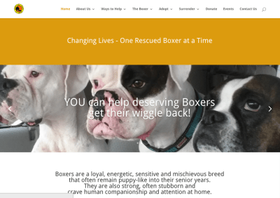 Boxer Rescue Angels of Florida