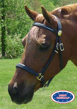 Derby-Originals-Rhinestone-Browband-Leather-Halter-Bridle-Draft-Combo-with-Reins-Havana-0-1