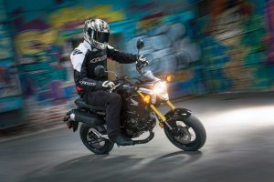From Generation Y newcomers to Ruckus veterans to motorhome travelers, Honda's Grom figures to have a breadth of users.