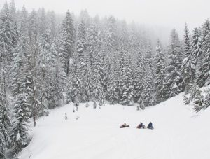 The International Snowmobile Manufacturers Association (ISMA) has asked a federal judge for permission to appeal rules of regulating the use of snowmobiles in national forests.