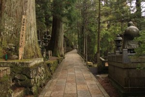 熊野古道3
