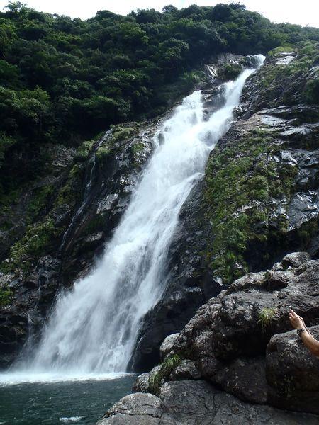 屋久島の滝つぼ