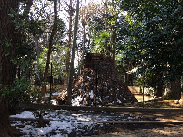代々木八幡宮 - 縄文時代の住居