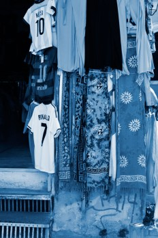 Cyanotype Photography [pt.32] (1)