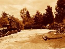 Sepia Photography [pt.4] (7)