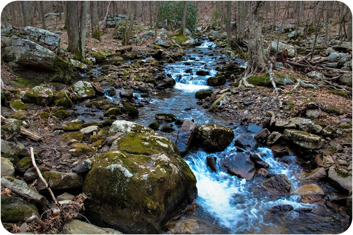 Creek in Giles County, Virginia.