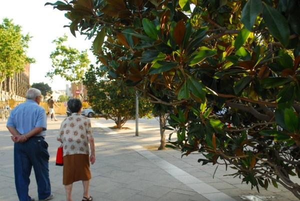 Elderly couple walking down street