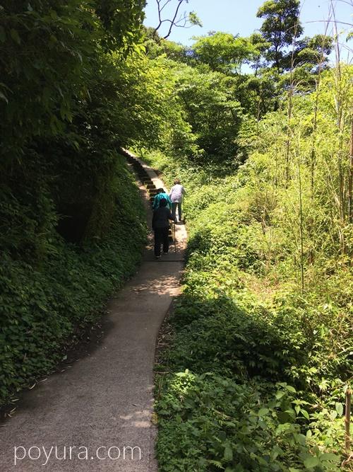 雄川の滝遊歩道の様子3