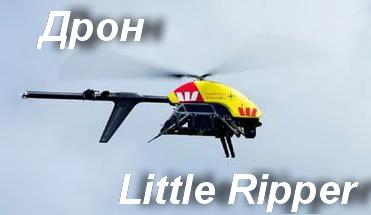 Little Ripper1