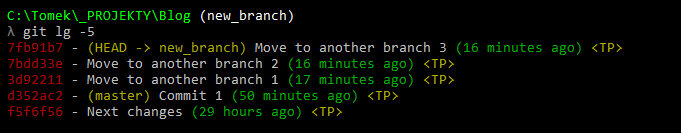 git log new_branch move to another branch