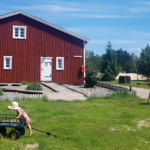 VI SEES! – WIOSKA NORWESKA ARENDEL