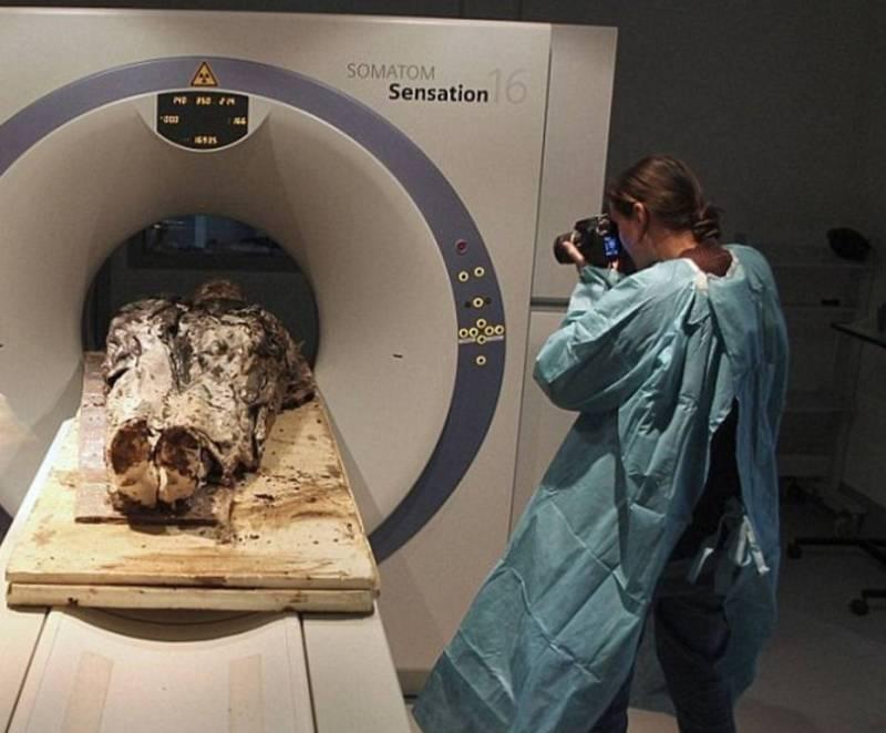 Во время исследований были обнаружены недуги почек и лёгких знатной дамы.