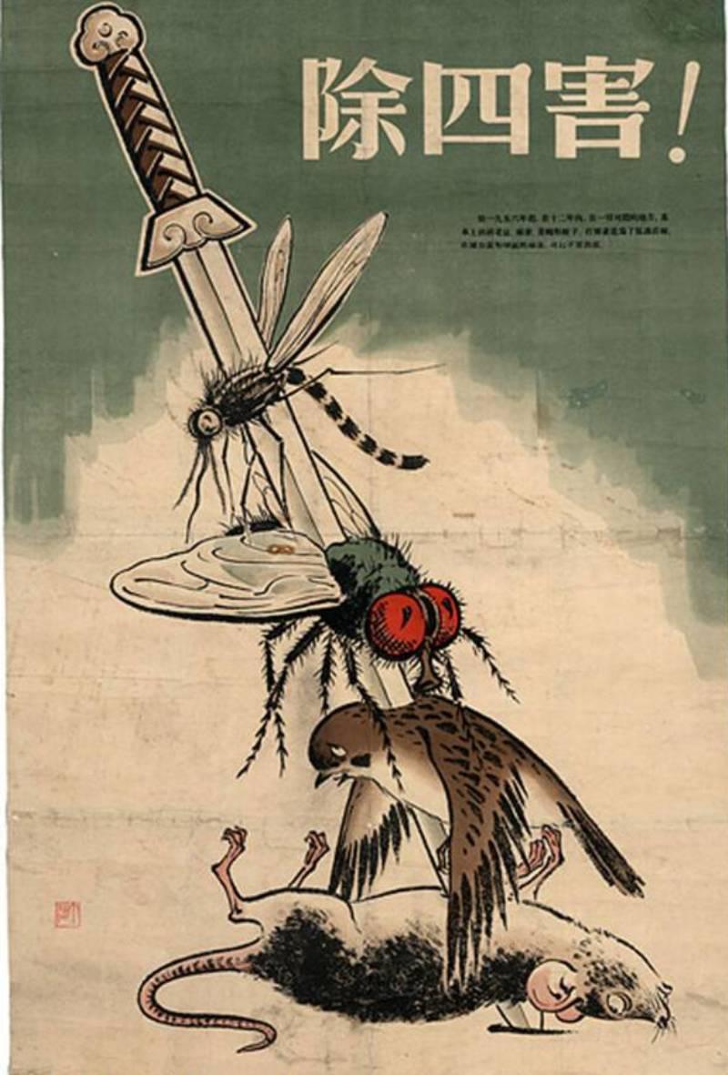 Уничтожение воробьёв Китай плакат пропаганда