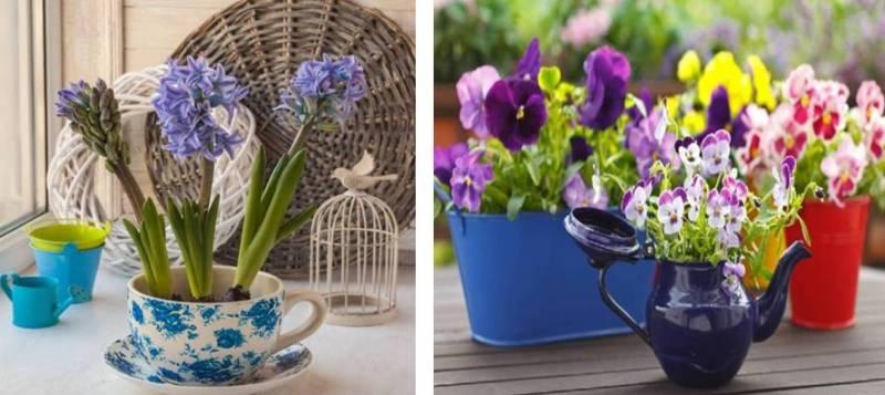 цветы в старой посуде