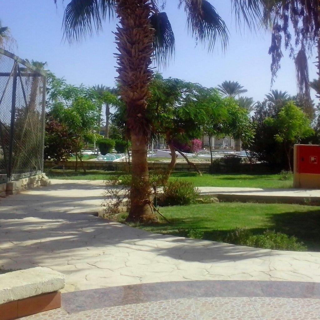 Отель Жасмин, Хургада, Египет
