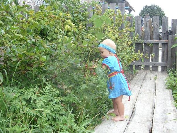 На прогулке малыша может подстерегать опасность на каждом шагу