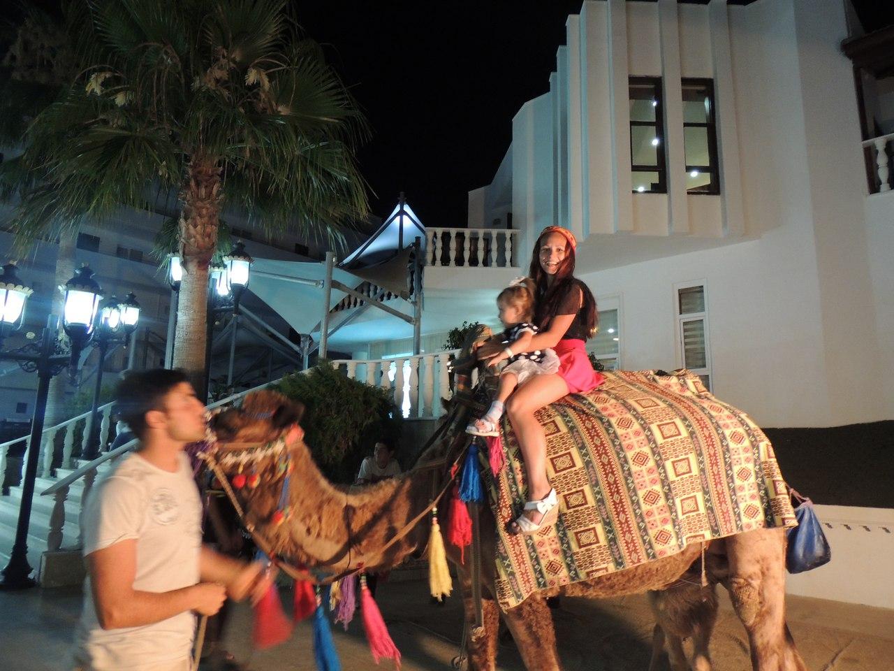 Можно вечером покататься на верблюде в Xeno Hotels Club Mare Клуб Белла Маре