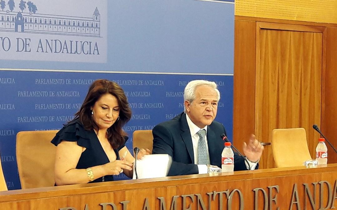 El PP defiende en el Parlamento una bajada del IRPF autonómico que avance en la convergencia fiscal