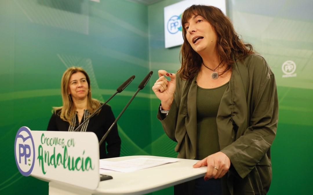 """Loles López: """"El PP Andaluz tiene fórmulas para crear empleo. Sólo la soberbia de Díaz le impide reconocerlo"""""""
