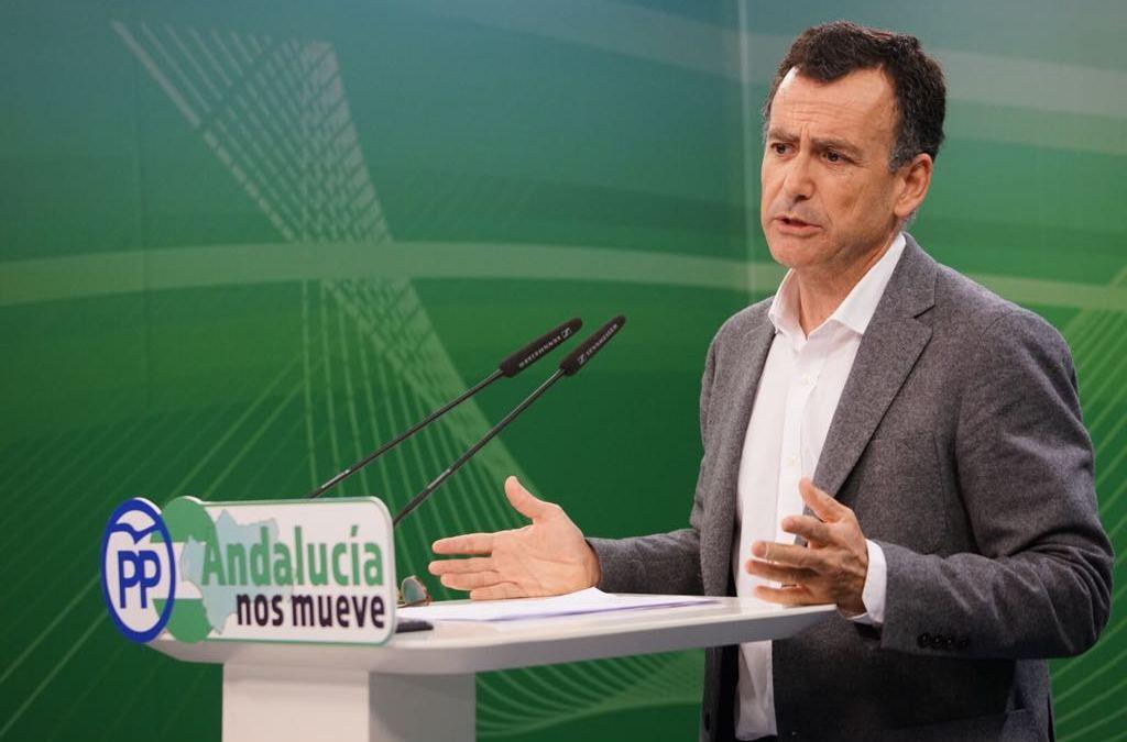 """Venzal: """"Díaz debe pedir a Sánchez que se abstenga con unos PGE beneficiosos para Andalucía"""""""