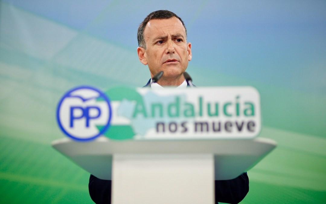 """Pablo Venzal: """"El PP Andaluz es el único partido que lucha contra la corrupción en Andalucía mientras los demás se ponen de perfil"""""""