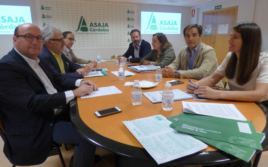 """El PPA anima a """"seguir escuchando a la sociedad"""" para encontrar soluciones a los problemas de Andalucía"""