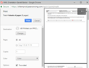 Example Screenshot of what the Print Preview screen in Google Chrome looks like