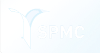 4-SPMD